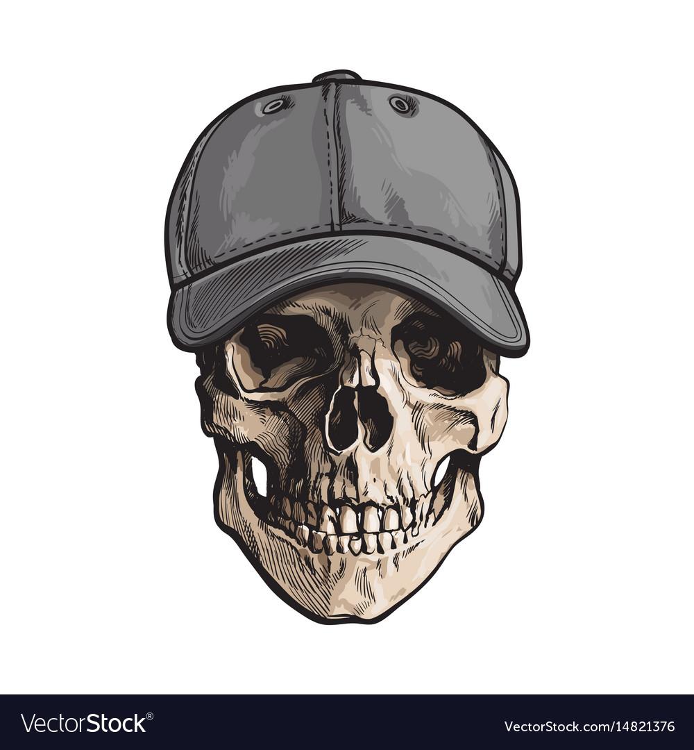 Hand drawn human skull wearing grey colored vector image