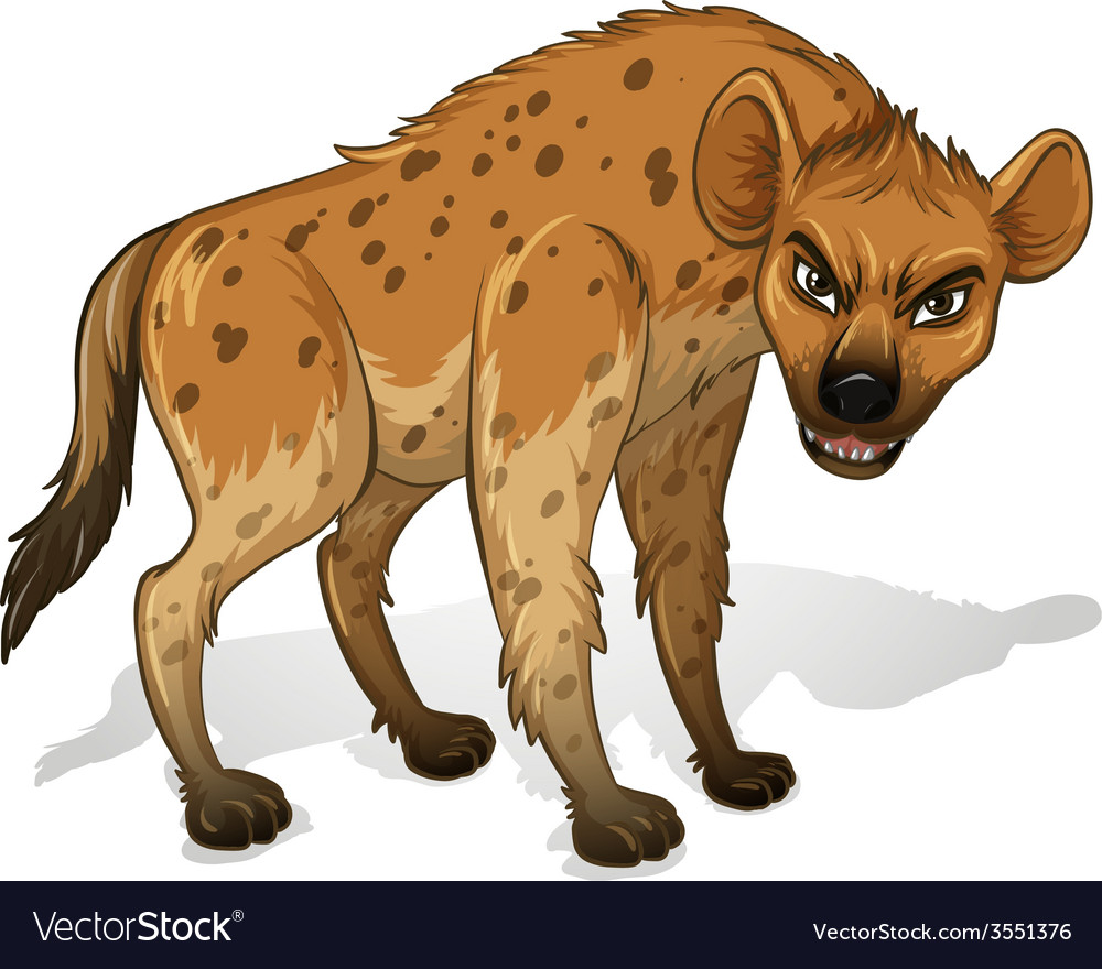 Hyena vector image