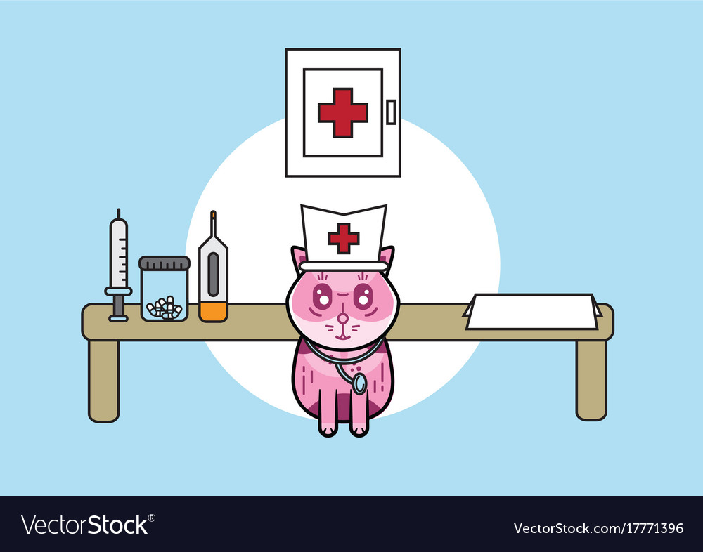 Cute medical cat