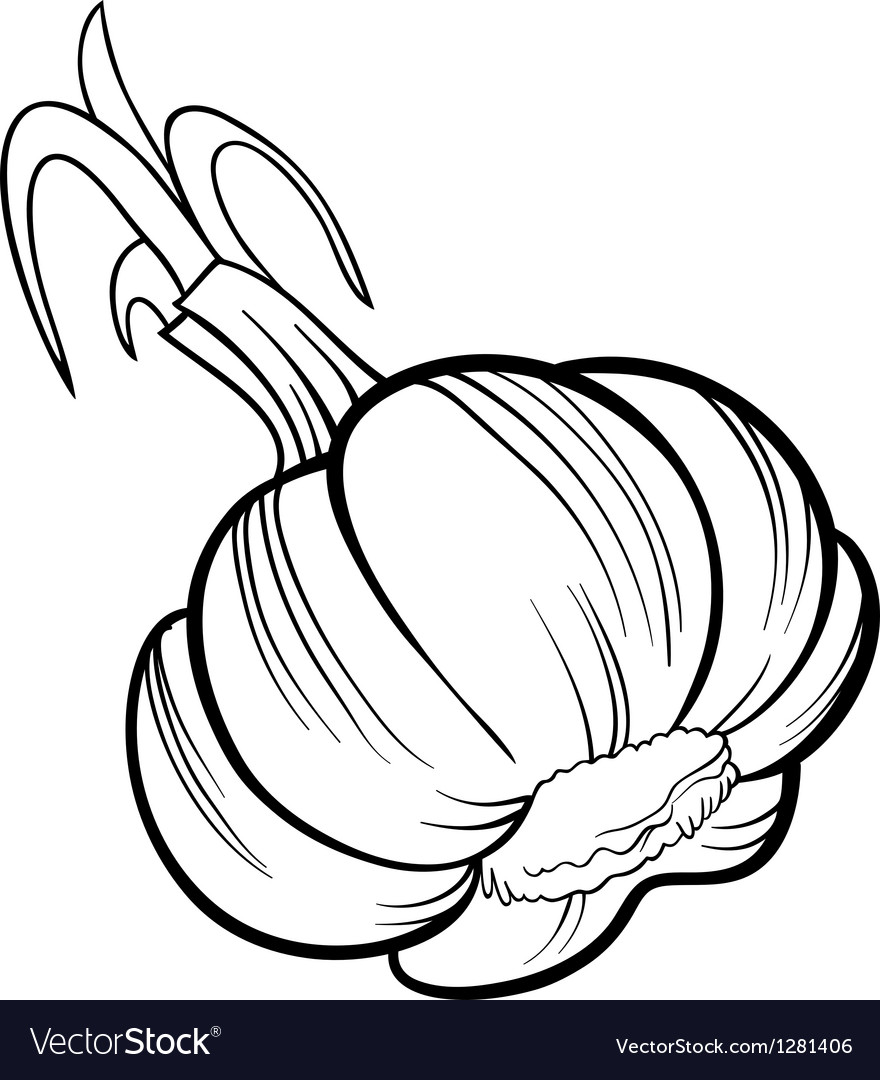 Garlic vegetable cartoon for coloring book Vector Image