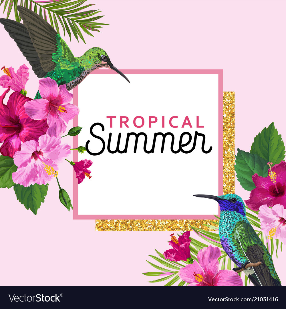 Tropical summer floral poster with hummingbird