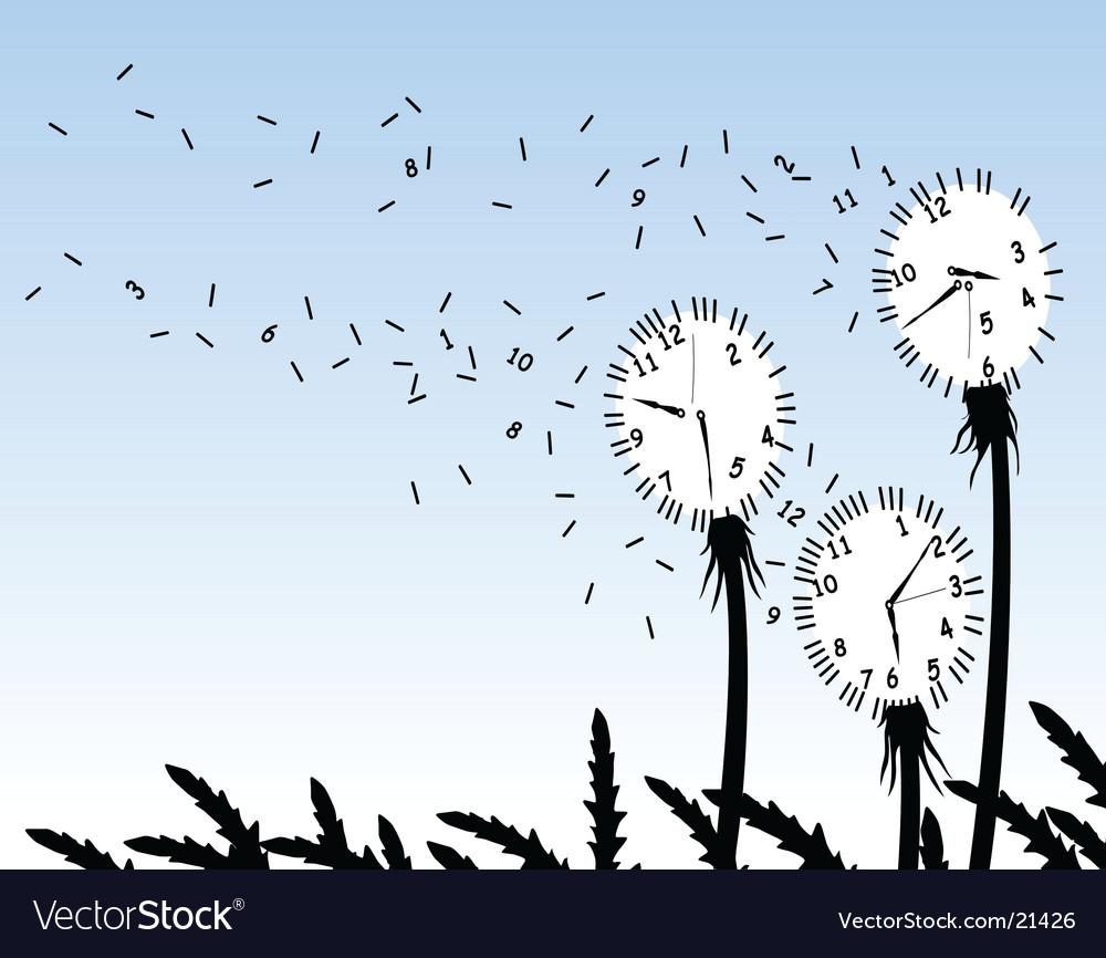 Dandelion clocks vector image