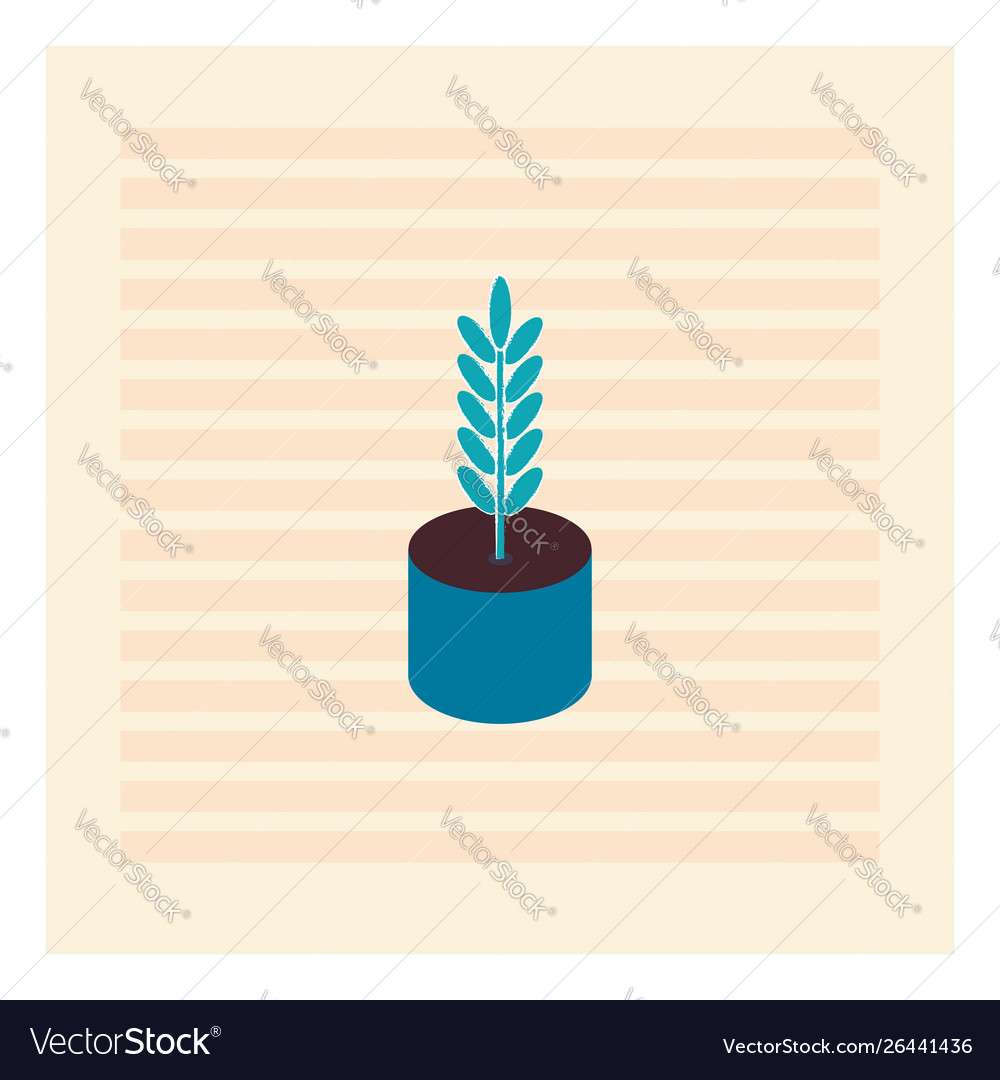 Blue plant in blue pot on white background