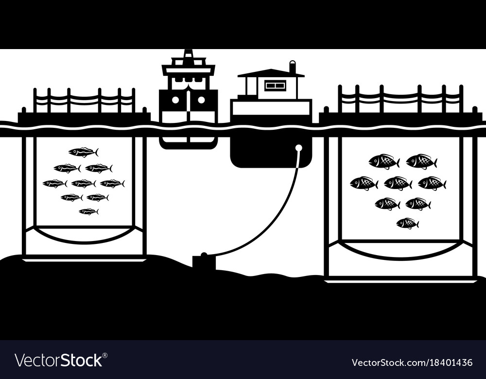 Sea cage fish farming Royalty Free Vector Image
