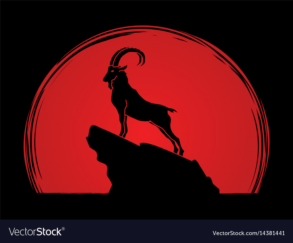 Ibex standing on the cliff mountain goat