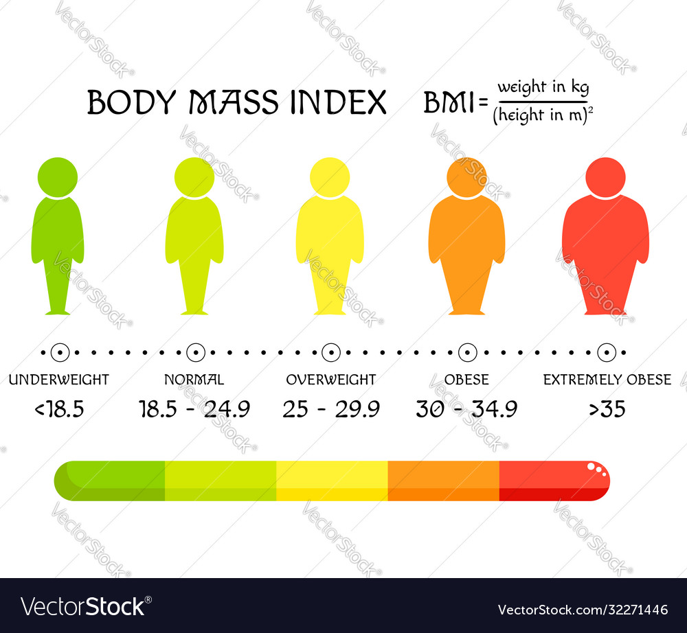 Bmi concept body shapes from underweight