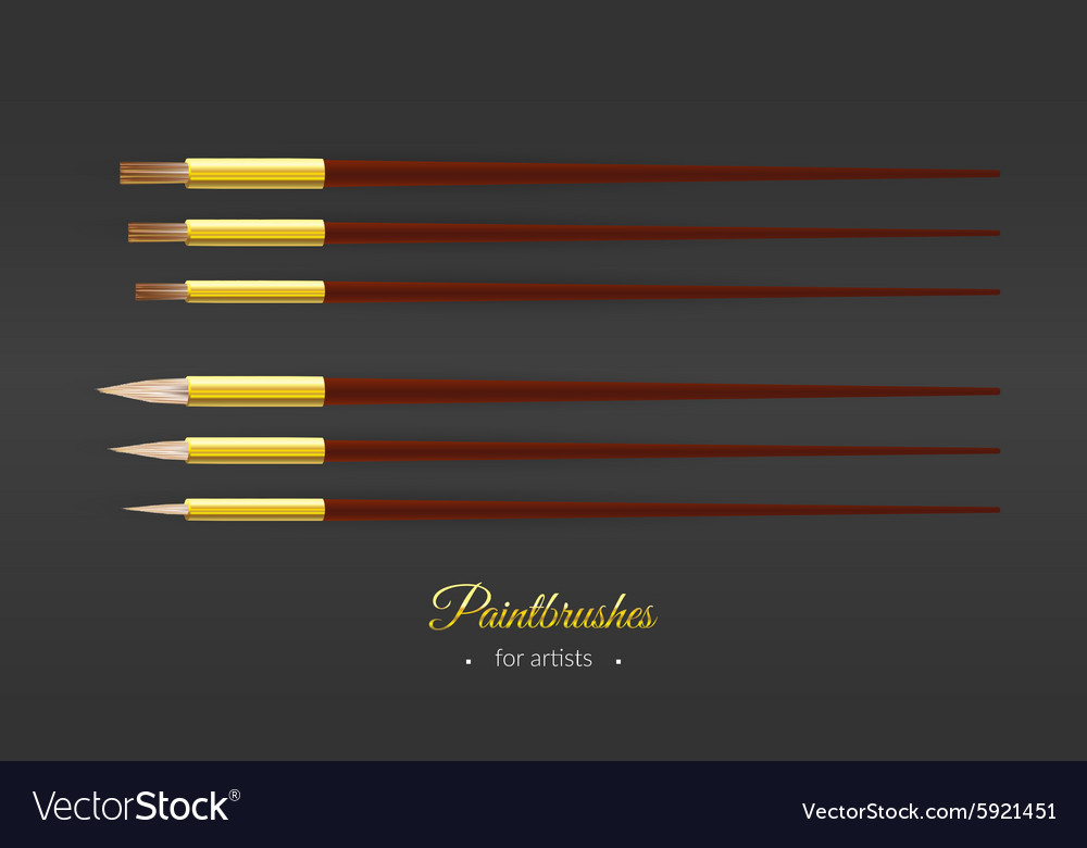 Set with round and flat paintbrushes for artists vector image