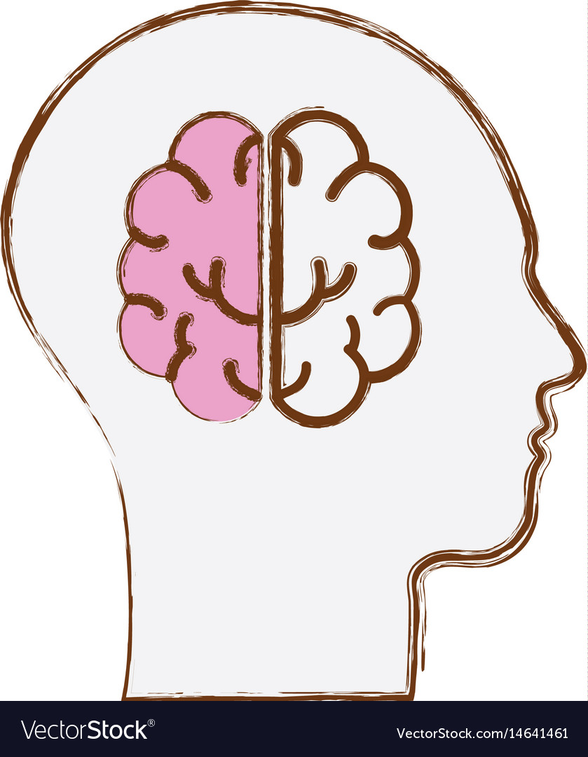 Line silhouette head with brain inside