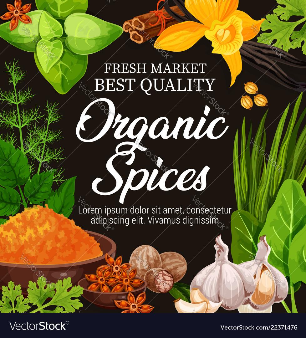 Natural herbs organic seasoning spices