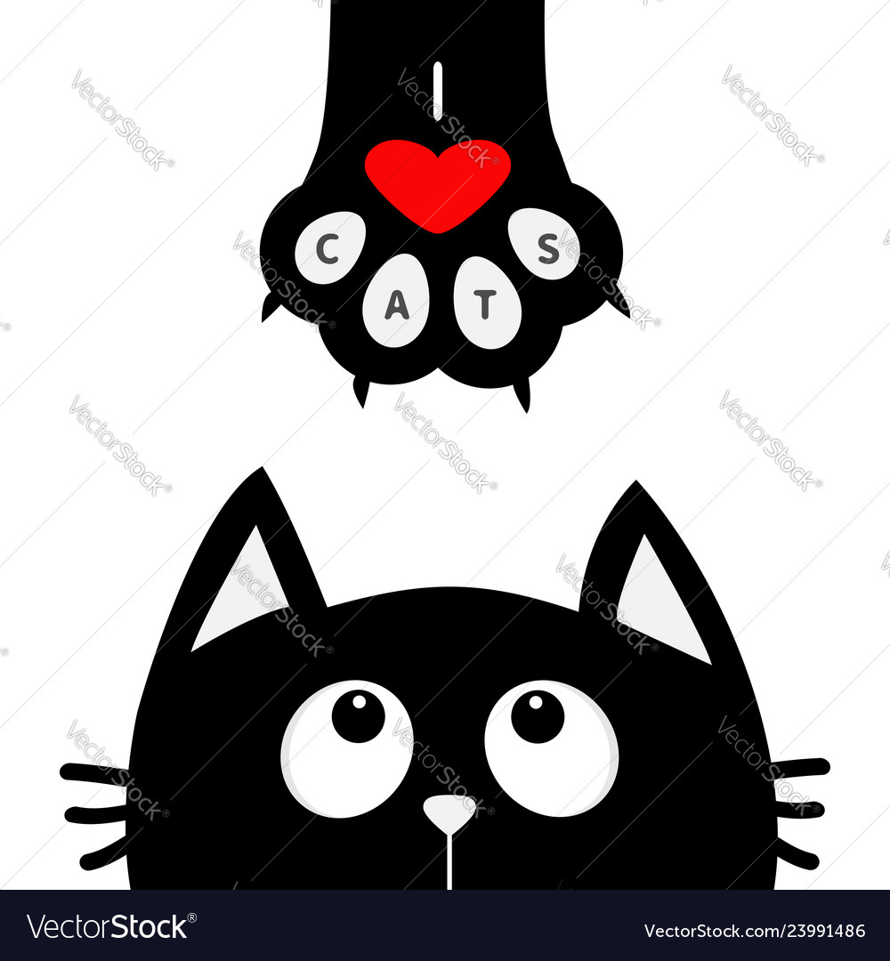 Black cat looking up to paw print with red heart