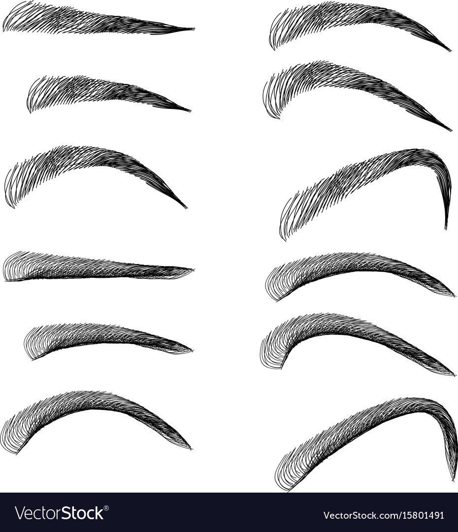 Set of outline eyebrows in different shapes and