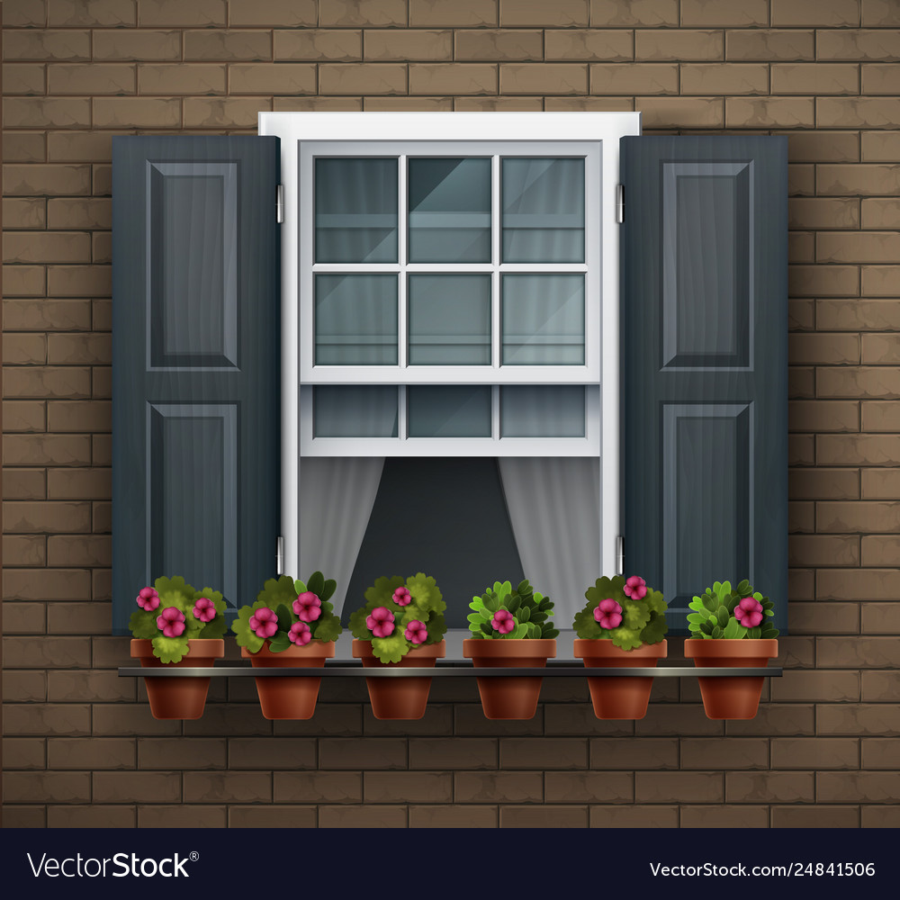 Window with flower pots on a wall cartoon house