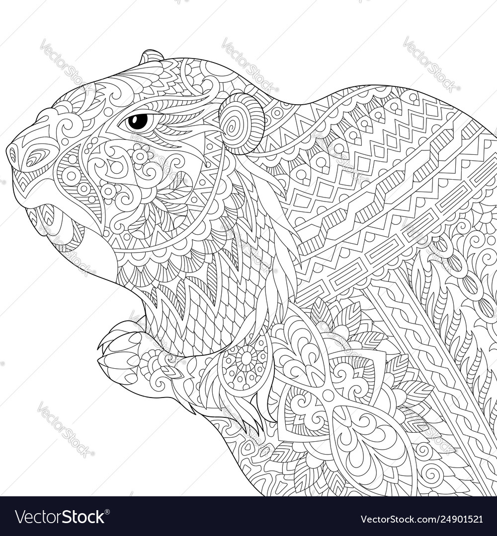 Groundhog adult coloring page