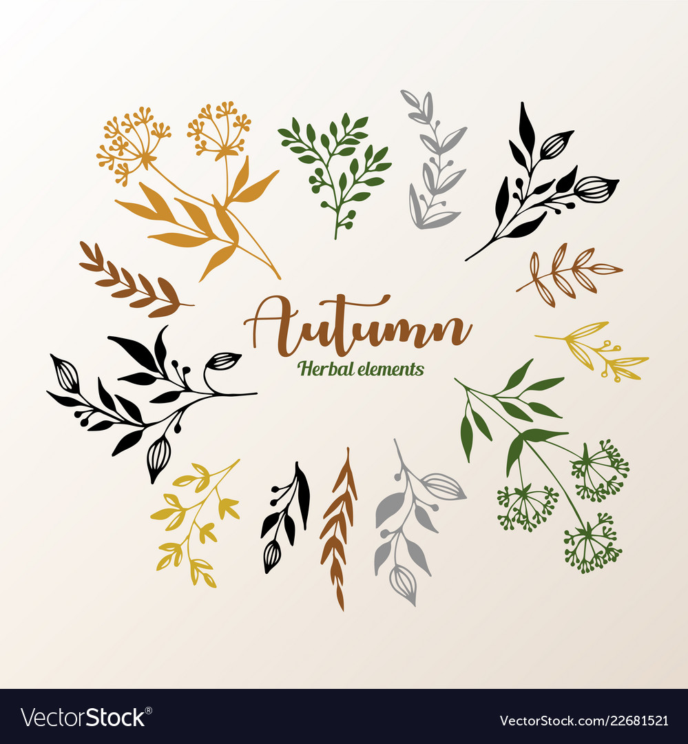 Herbal design elements collection set hand