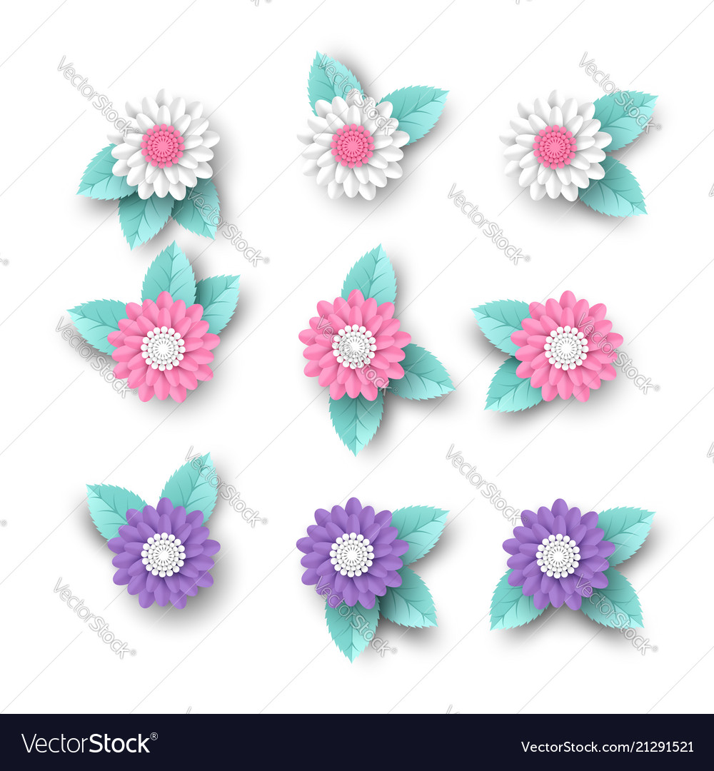 Set of 3d paper cut flowers with leaves