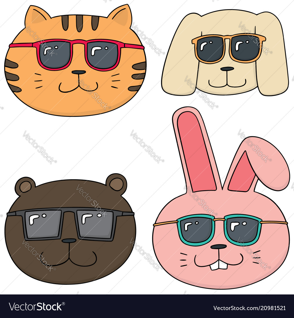 Set of animal with sunglasses