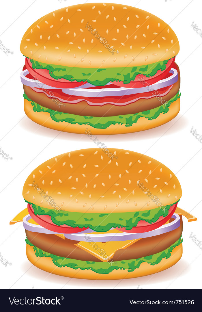 Hamburger and cheeseburger isolated on white backg vector image