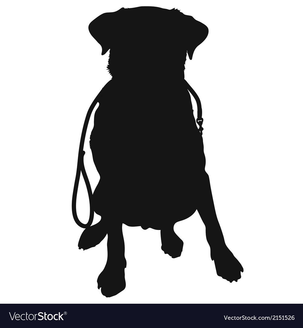 Labrador Retriever Leash Silhouette