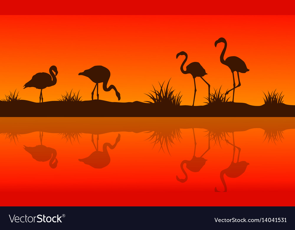 Collection of lake scene with flamingo silhouettes