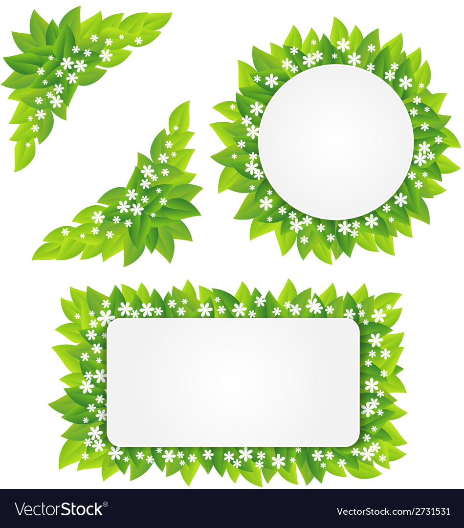 White flowers on green leaves frame Royalty Free Vector