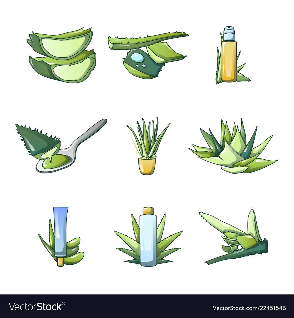 Aloe vera icon set cartoon style