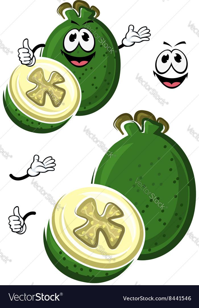 Cartoon australian feijoa fruit character