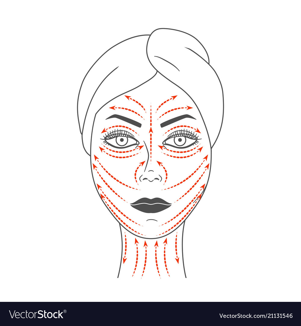 Schematic representation of facial massage lines