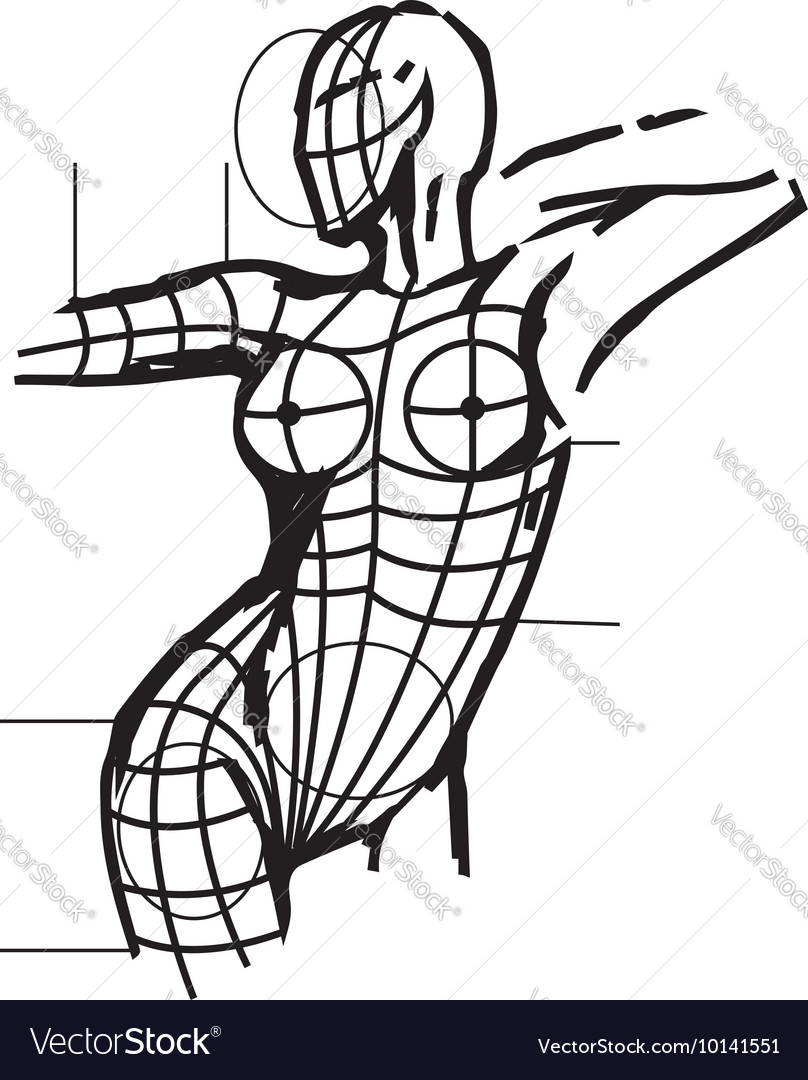Aestetic Surgery Female Body Art Royalty Free Vector Image