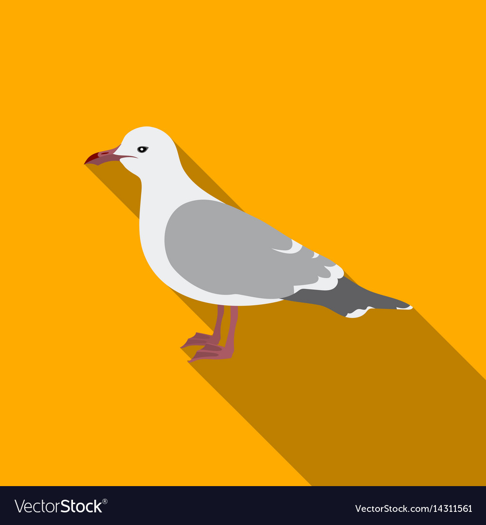 Seagull icon in flate style isolated on white