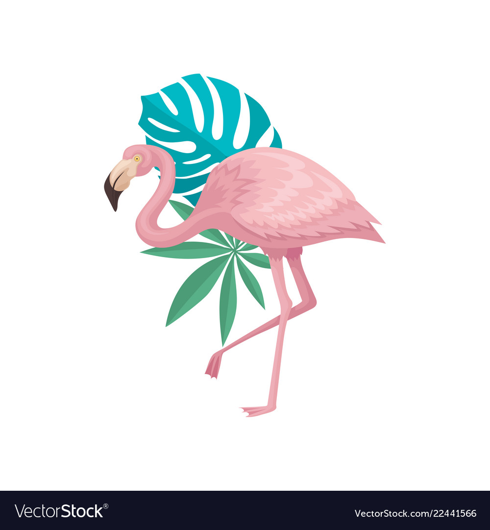 flamingo with palm tree and monstera leaves vector 22441566