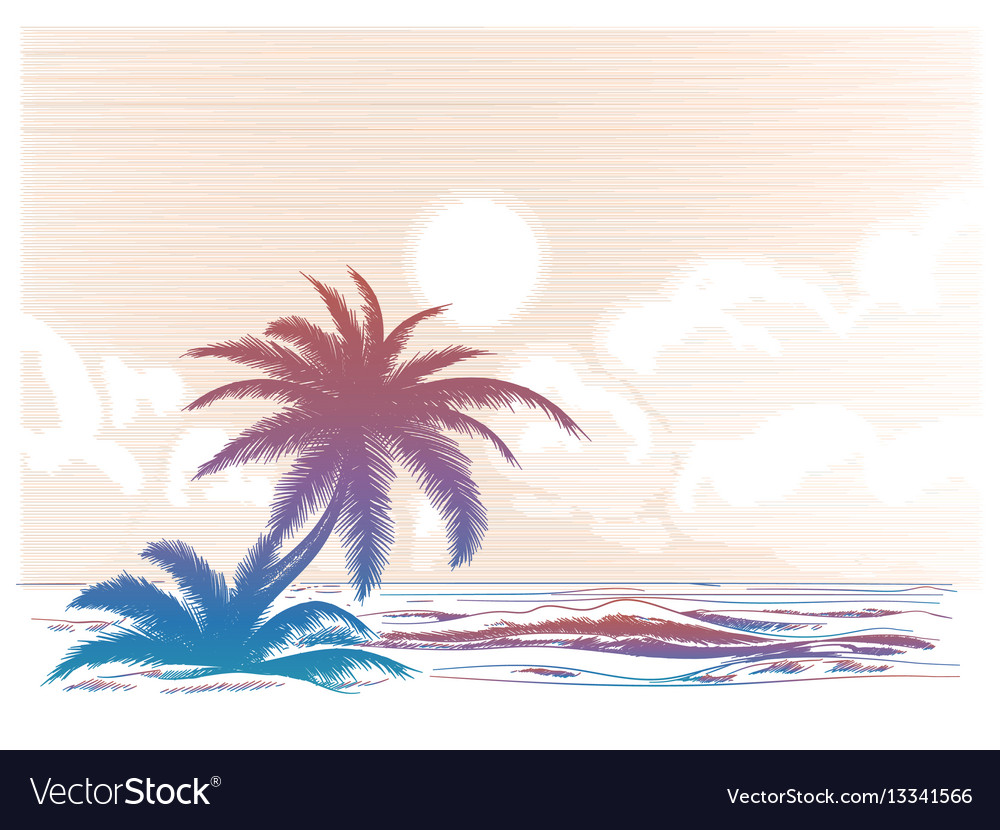 Palm tree beach colorful landscape vector