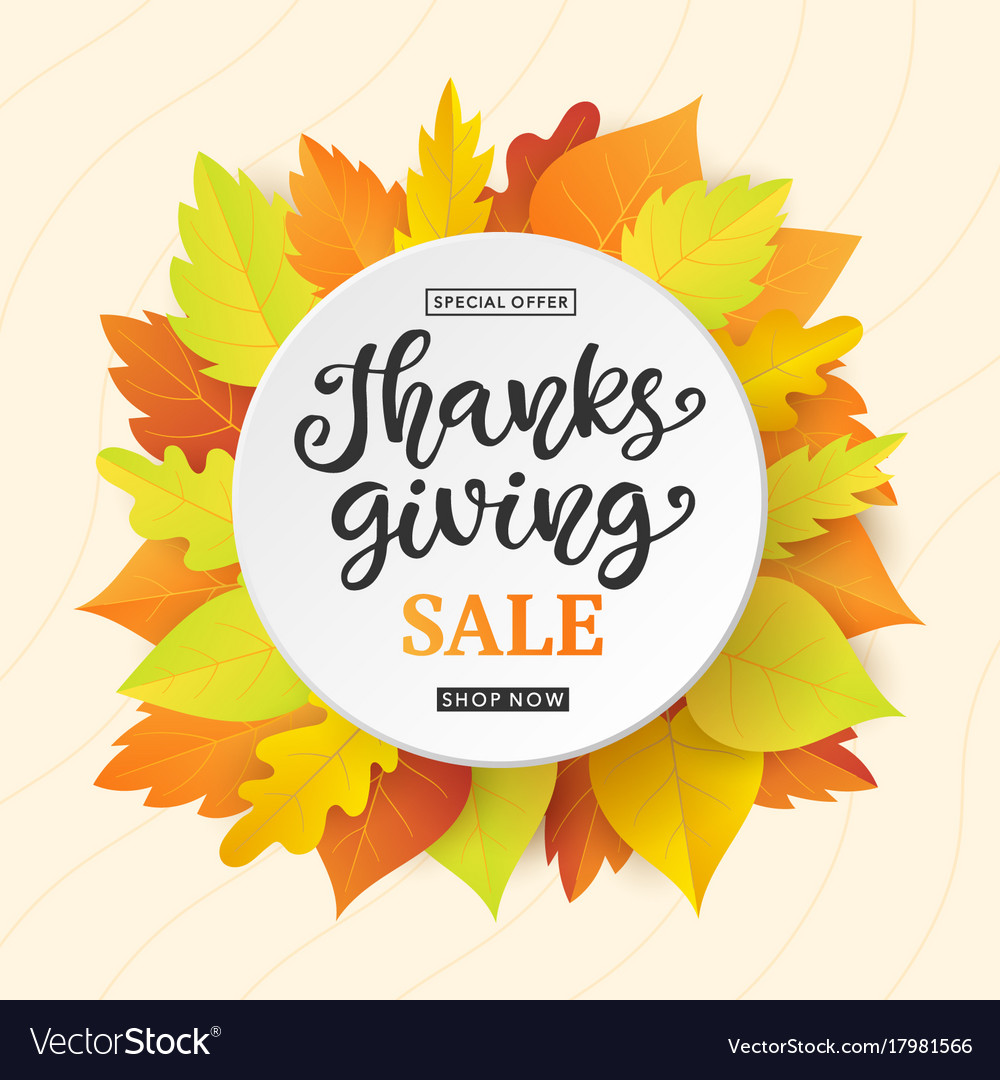 Thanksgiving day sale banner template vector image