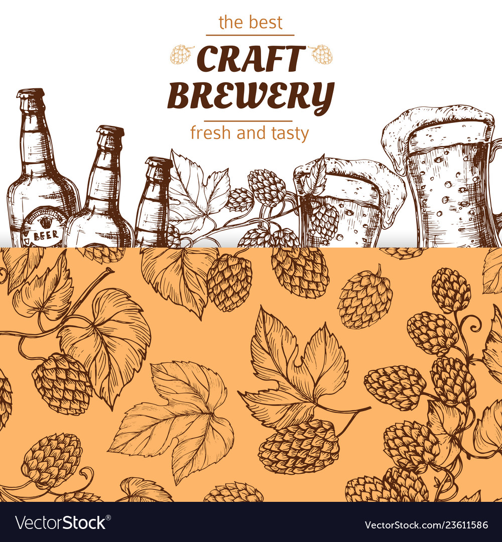 Craft brewery banner template with hand drawn hops
