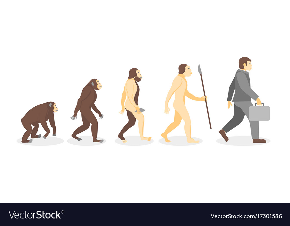 Stage of human evolution from monkey to