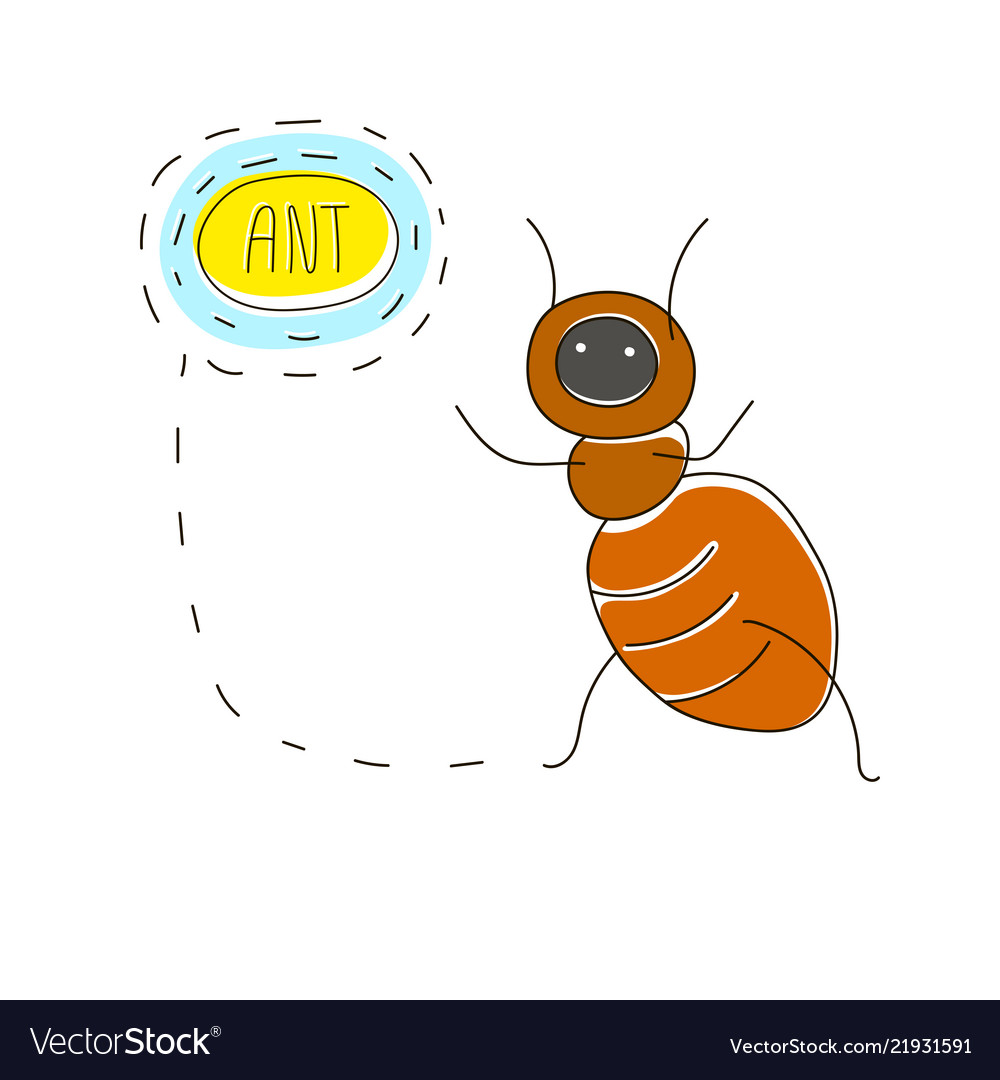 Cute cartoon concept with funny bug ant and name