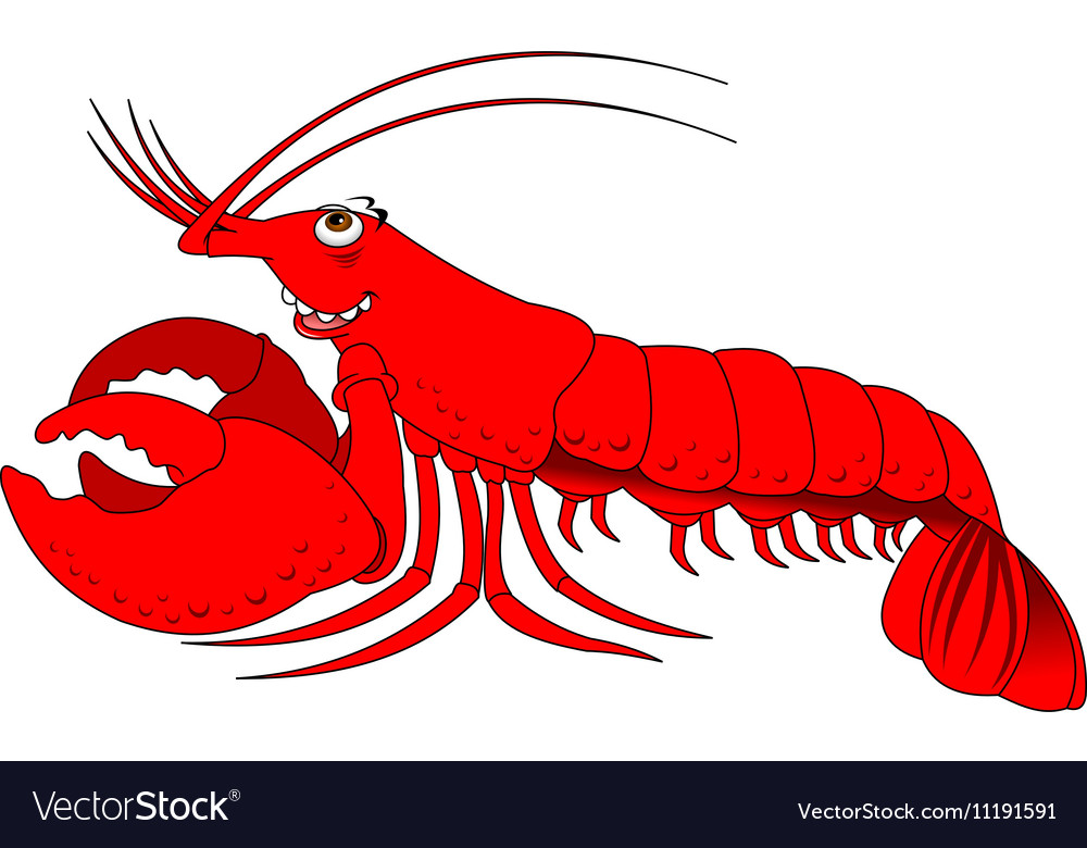 Lobster cartoon vector image