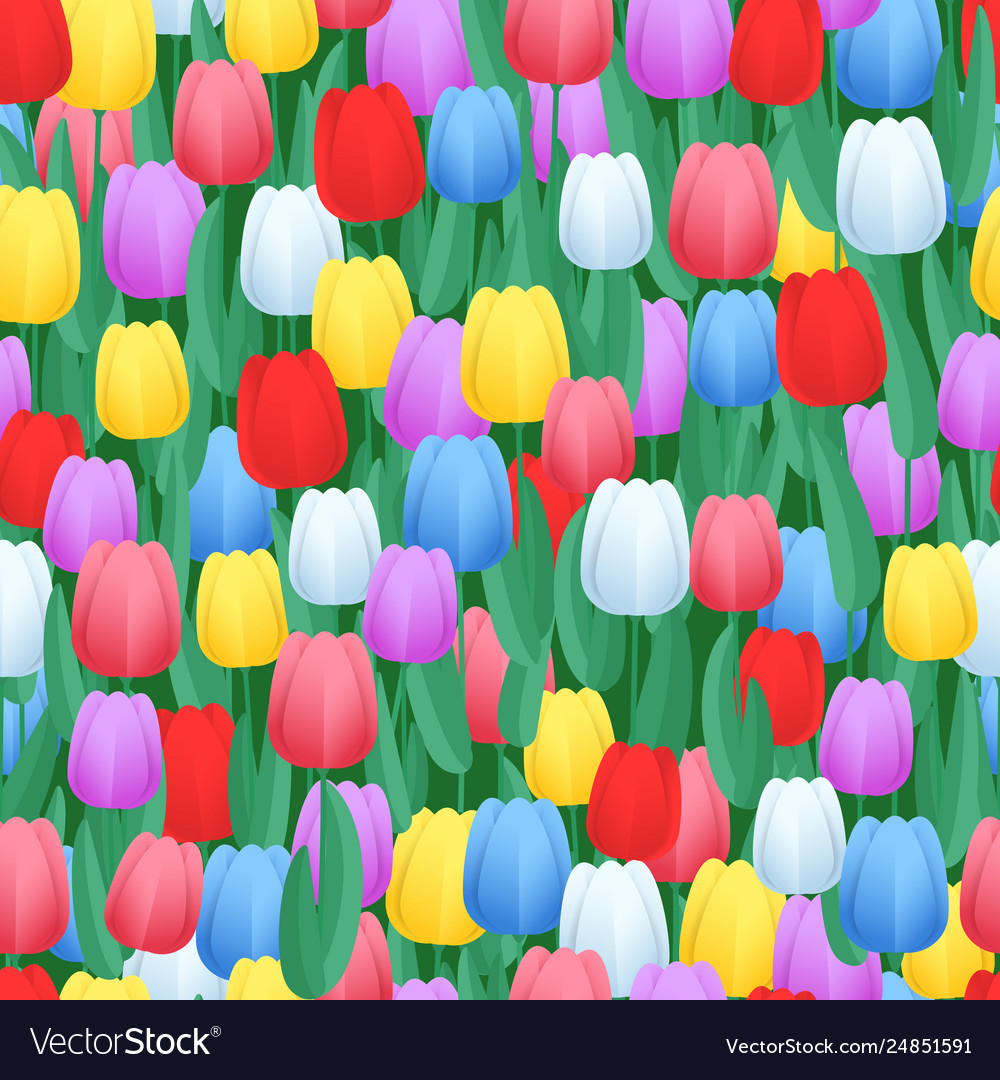 Spring color tulips seamless pattern abstract