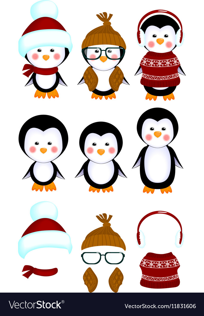 Cute penguins baby clothes vector image