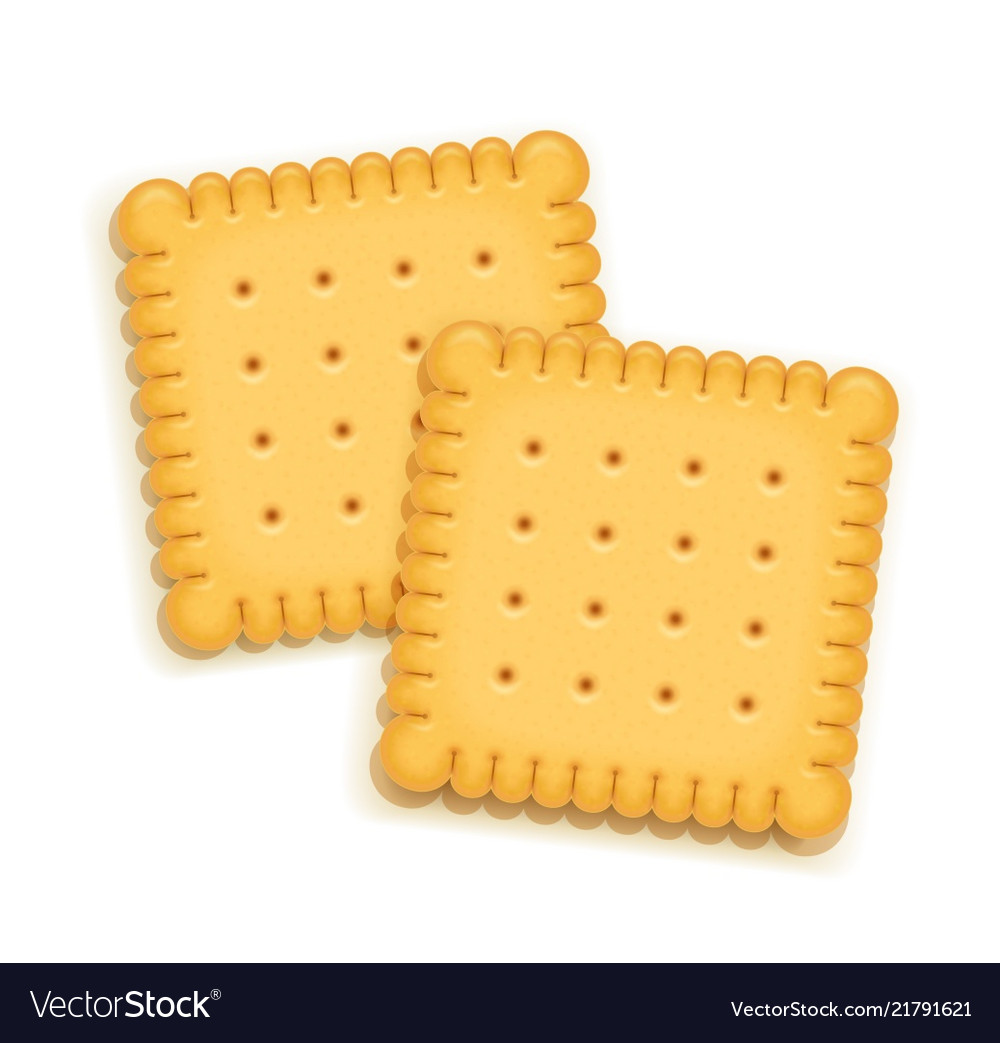 two delicious biscuit royalty free vector image vectorstock