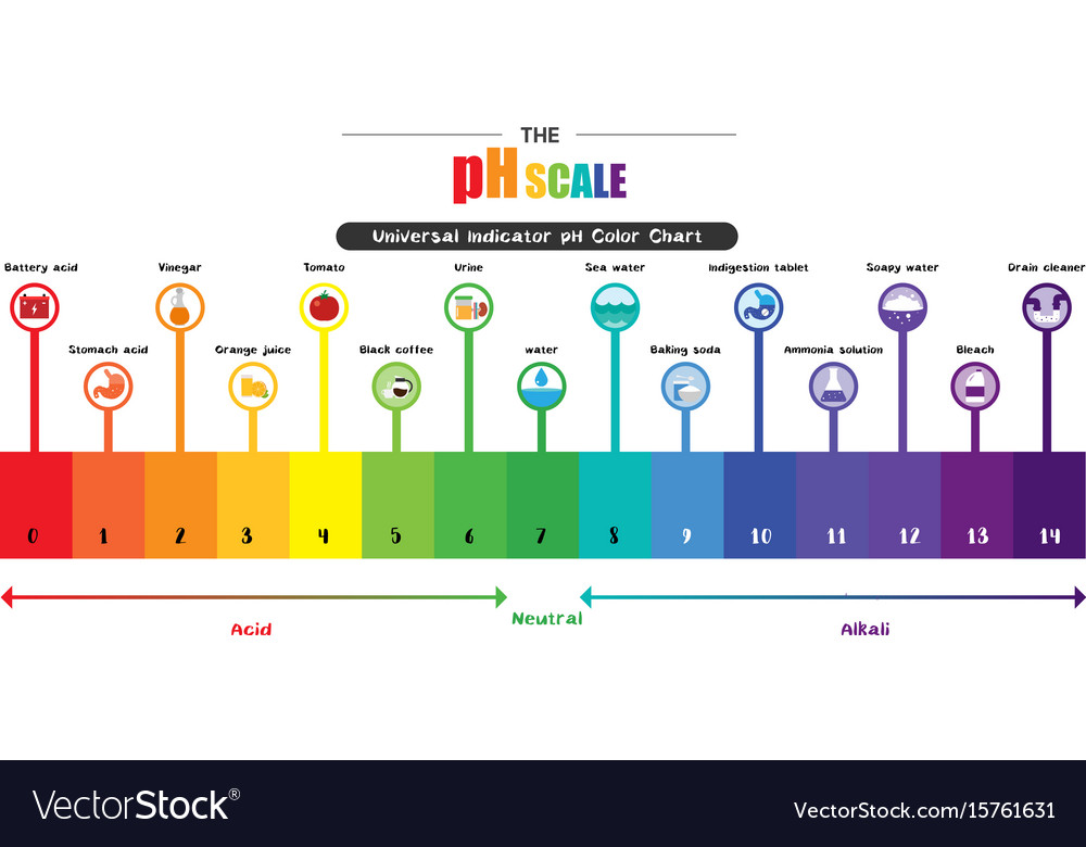 ph scale universal indicator ph color chart vector image Acid Dissociation Constant