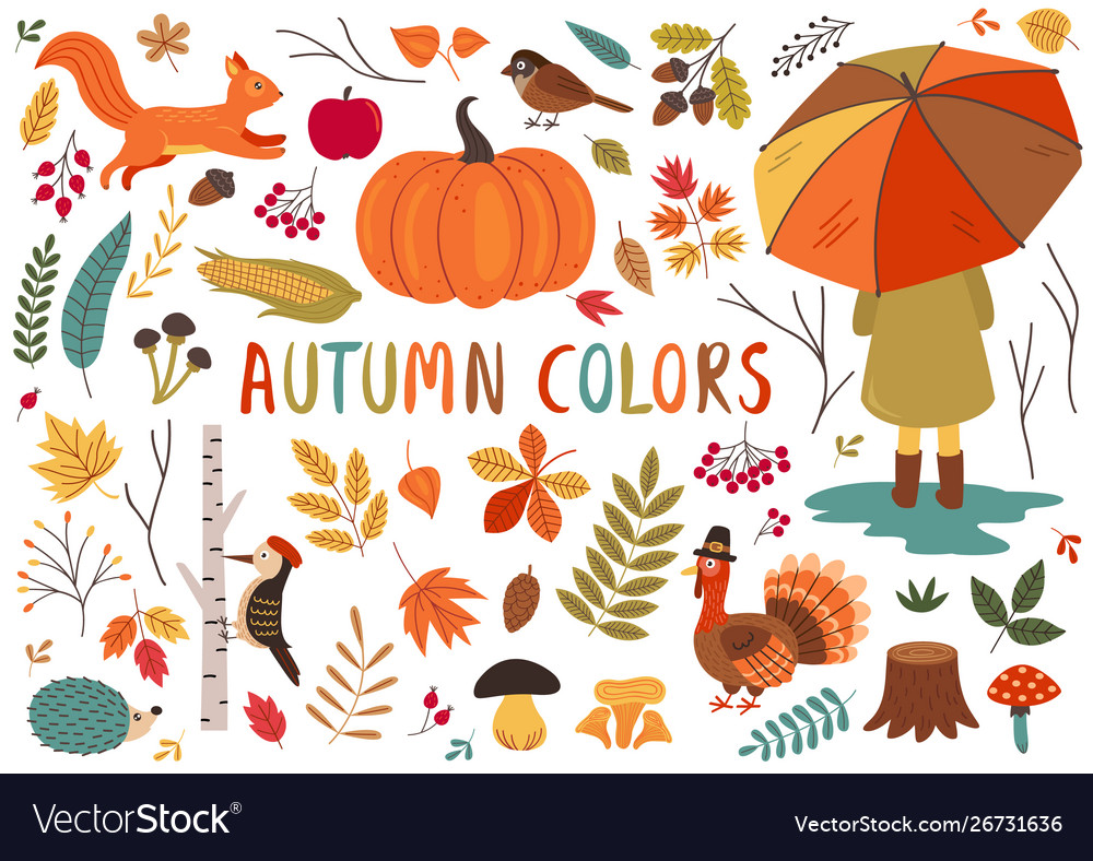 Basic rgbset isolated autumn colorful elements