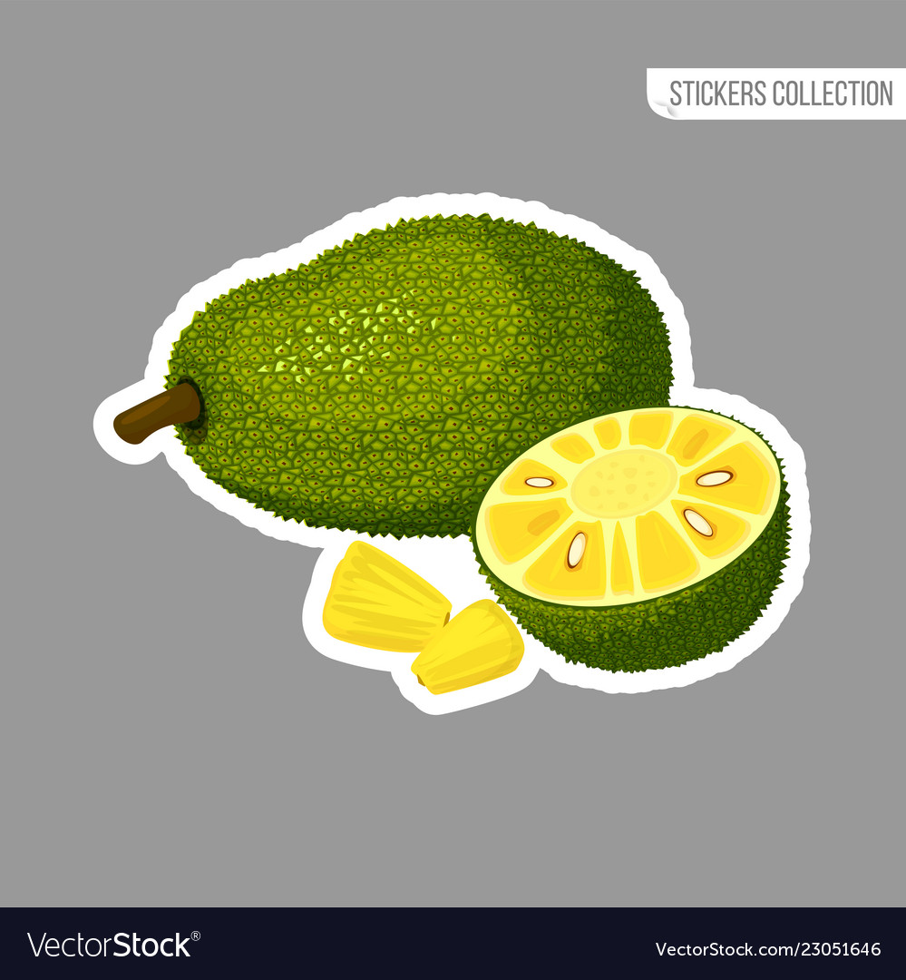 Show Picture Of A Jackfruit