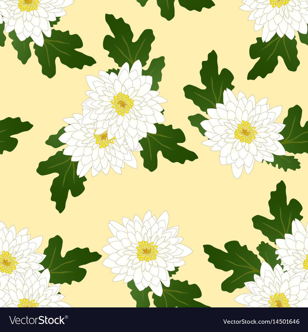 White chrysanthemum on yellow ivory background vector image mightylinksfo