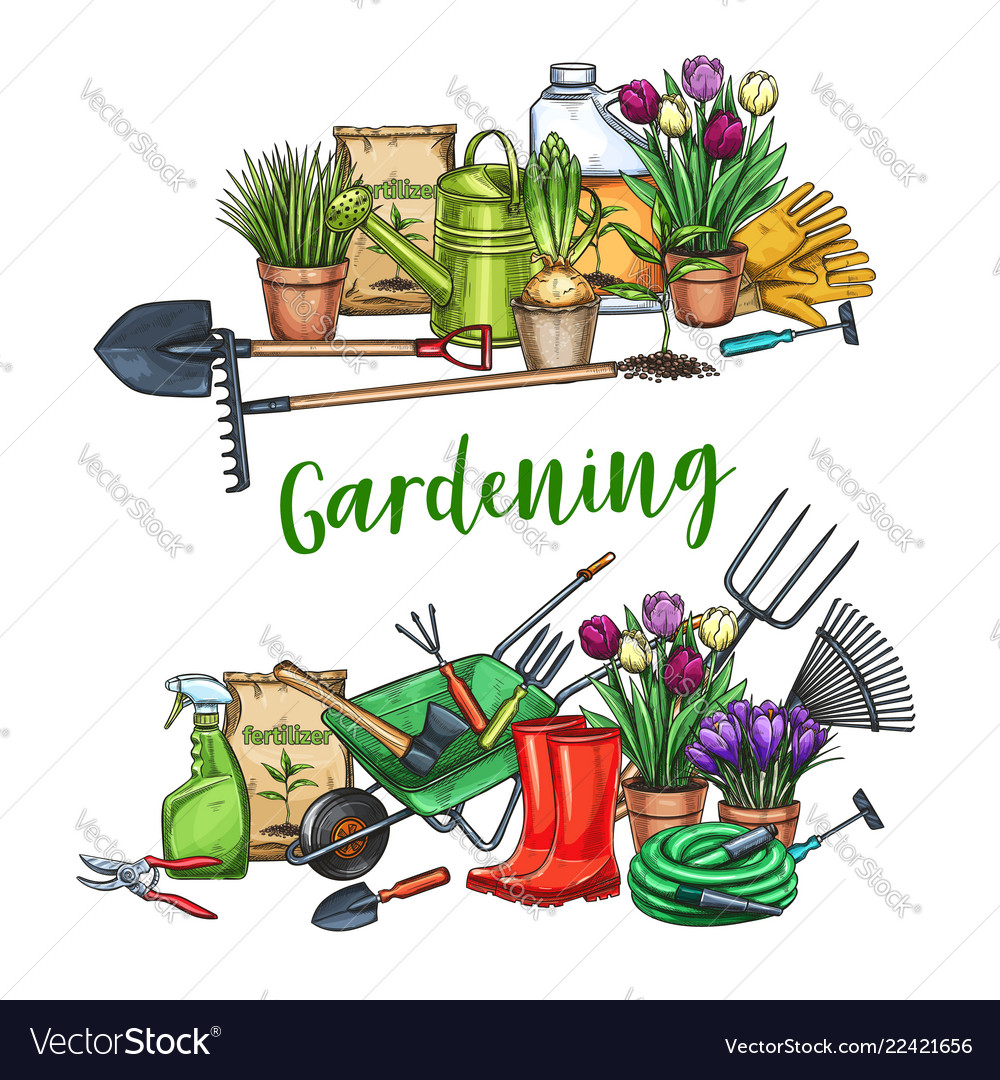 Gardening Banner With Tools Royalty Free Vector Image