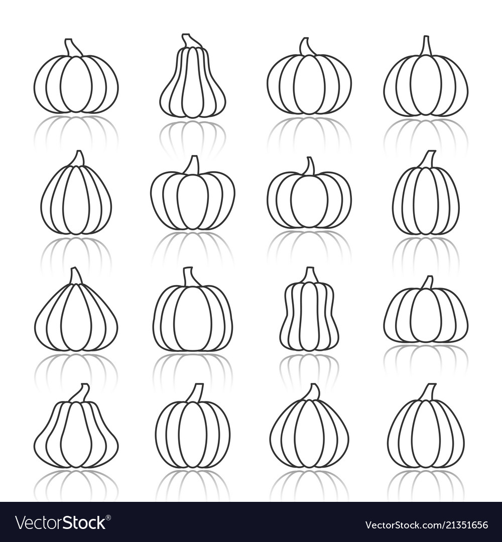 Pumpkin black line with reflection shadow icon set