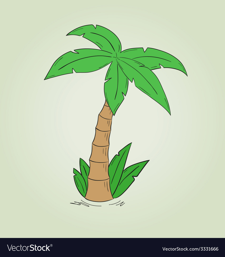 Sketch of the palm tree