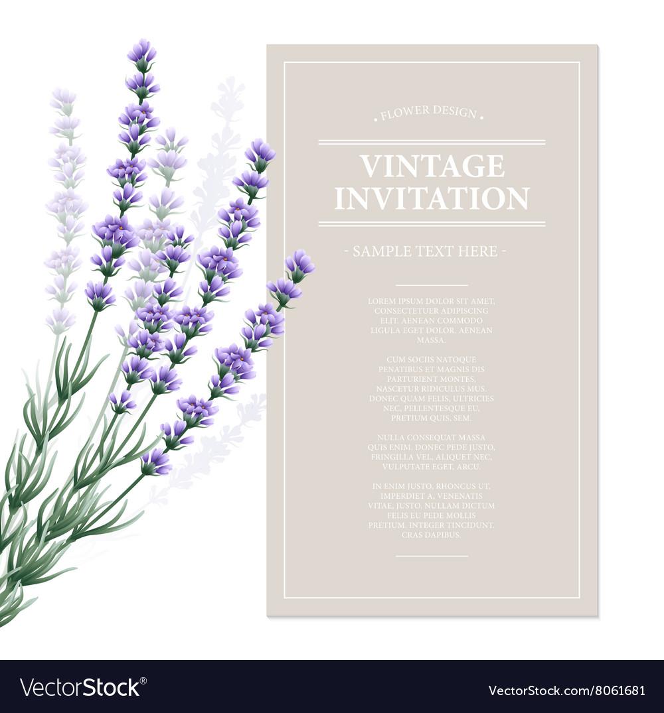 Vintage card with lavender flowers