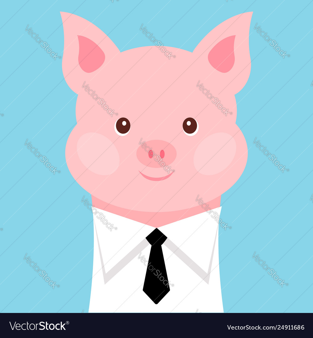 Funny pig in a shirt with a tie