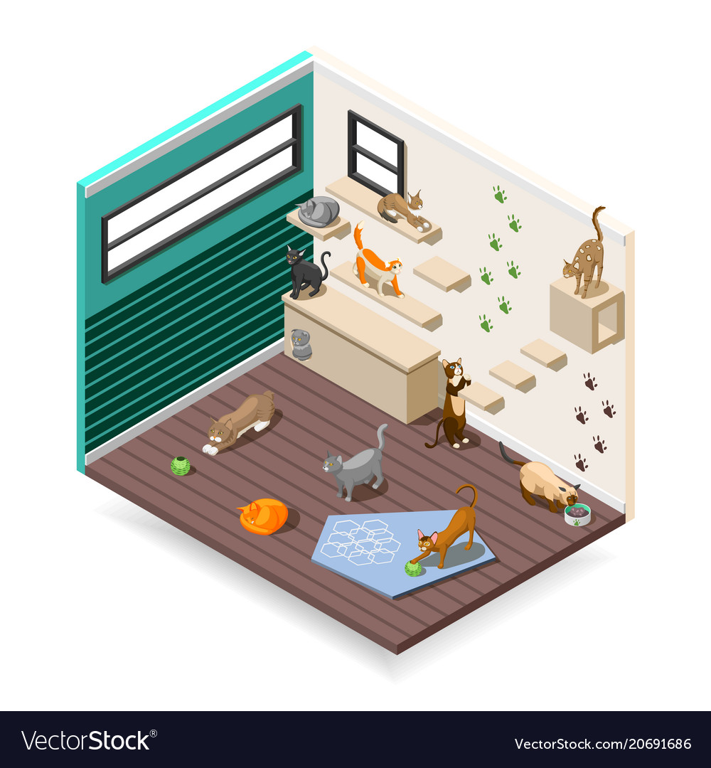 Home for cats isometric composition