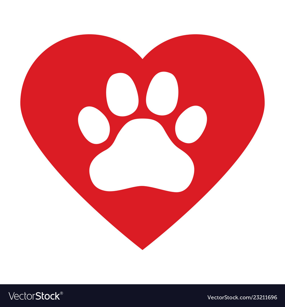 Dog paw in red heart on white background